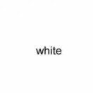 white · 凡人