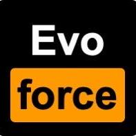 evoforce · 元婴